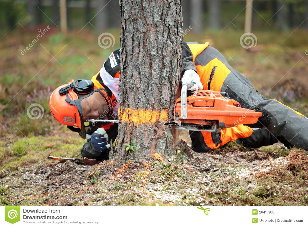 Image result for japanese lumberjack