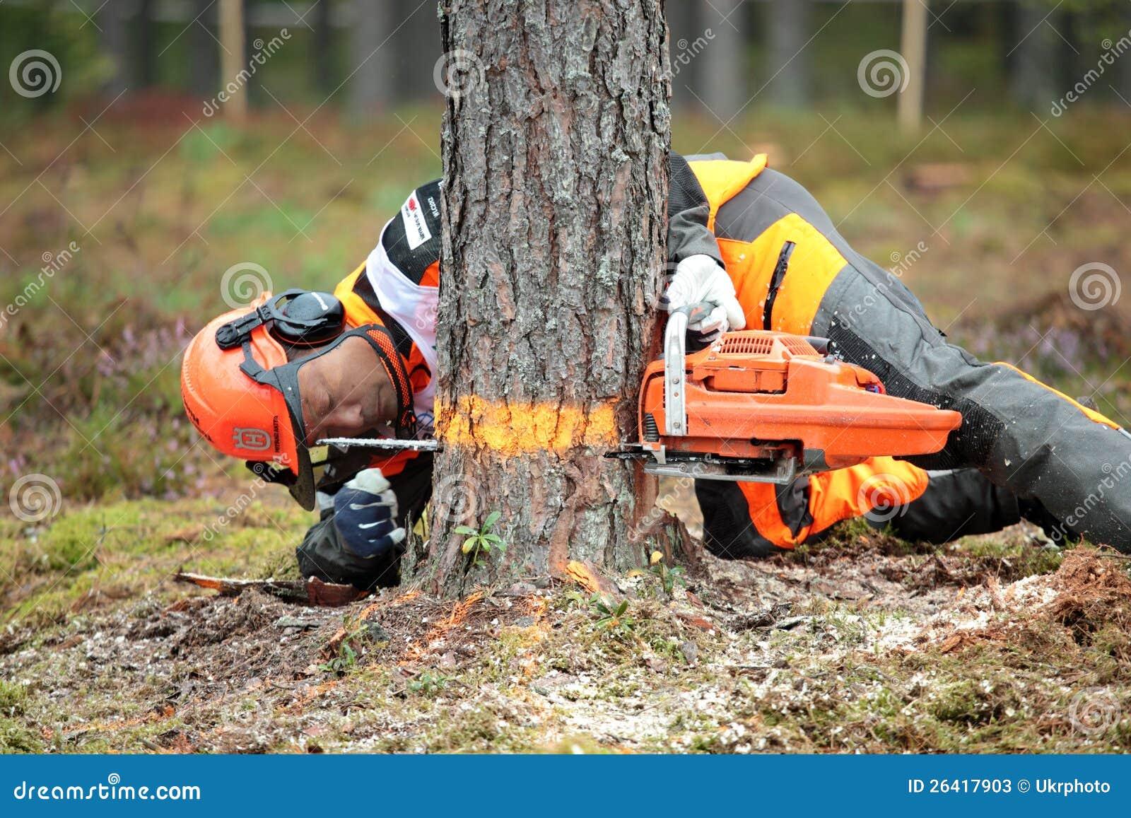 Image result for japanese lumberjack