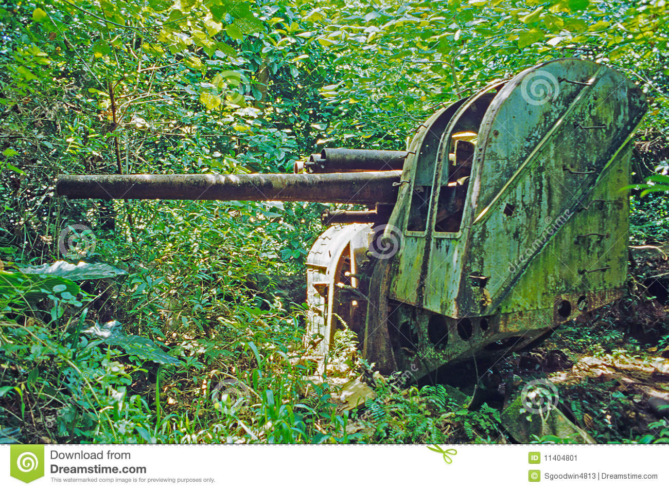 World War II Era Japanese Guns On Pohnpei Island Stock Image