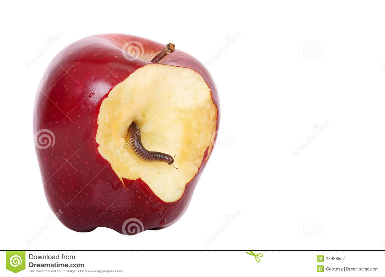 worm in apple royalty free stock photography image 27488557