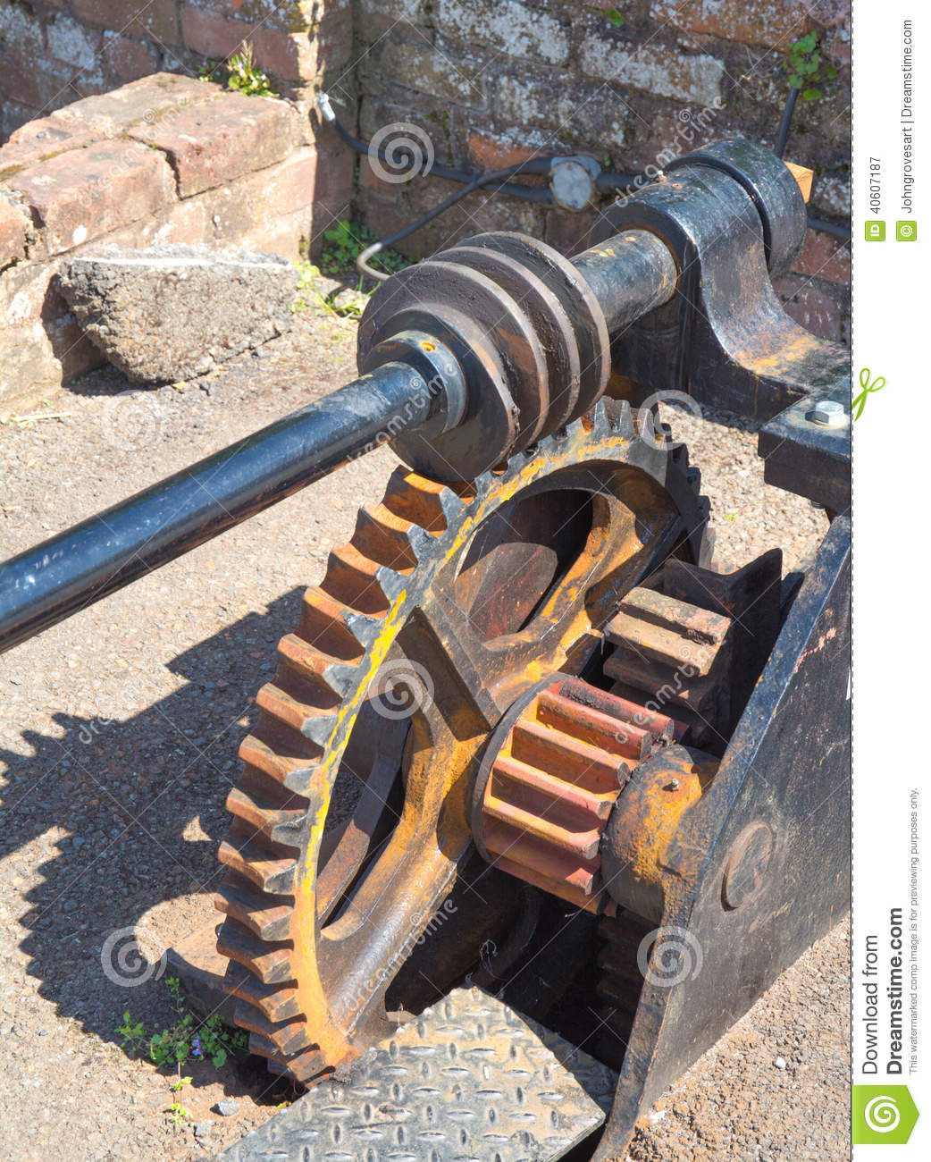 Worm Drive Stock Photo Image 40607187