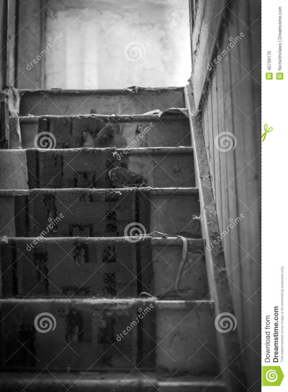 Worn Carpet Old Stairs Of Abandoned House Black And White Stock Photo Image 45739170