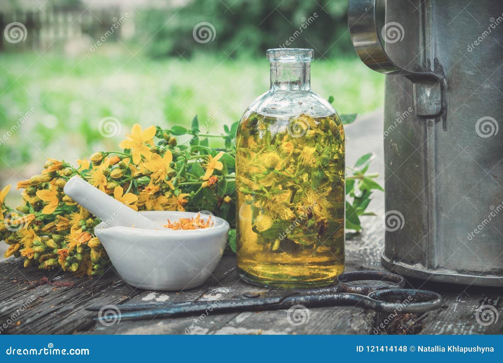 Wortväxter för HSt Johns, olja eller genomskinlig flaska för avkok, mortel på trätabellen utomhus