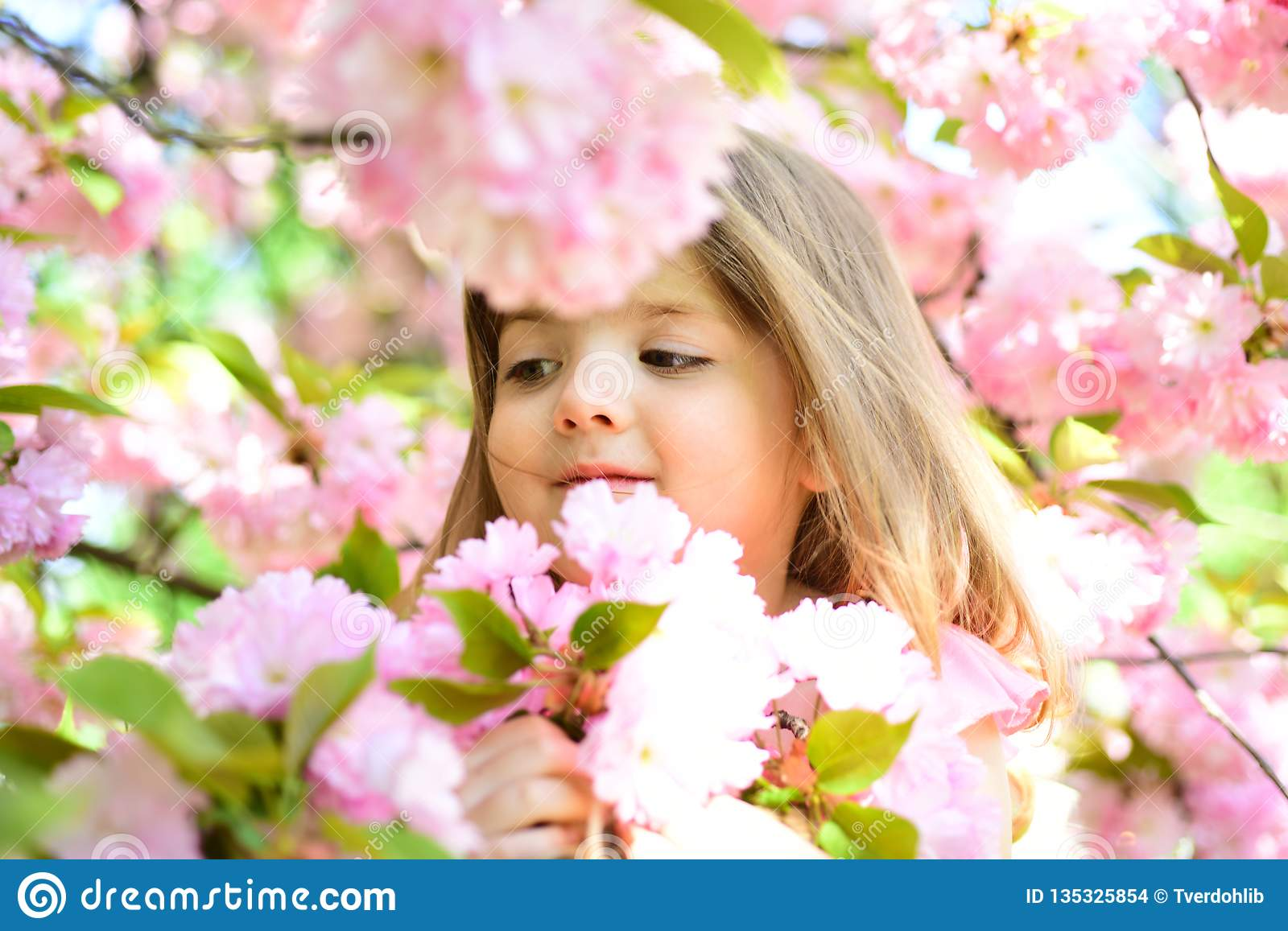Wow. Springtime. weather forecast. face and skincare. allergy to flowers. Little girl in sunny spring. Small child