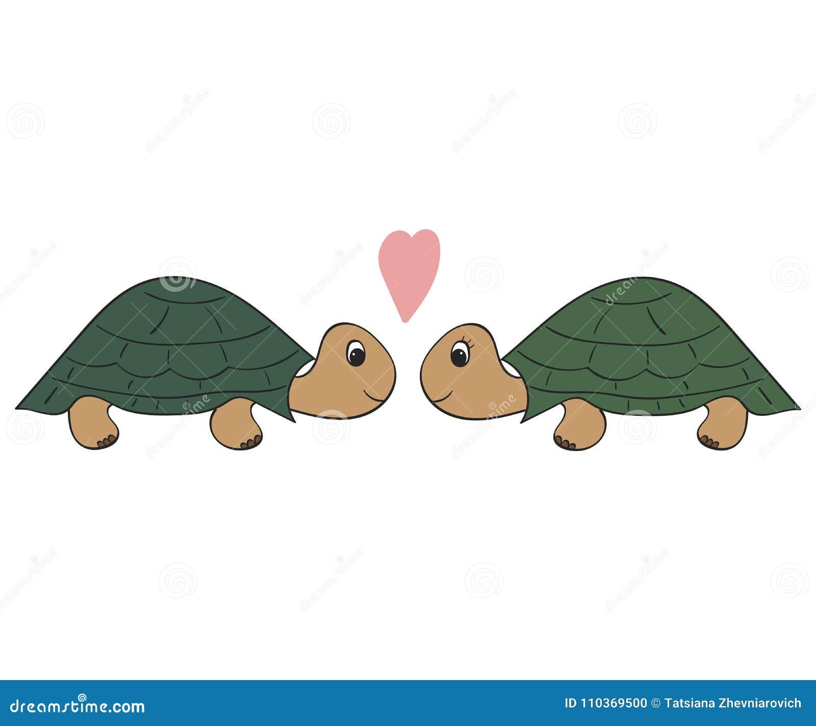 Wręcza patroszoną ilustrację, para żółwie