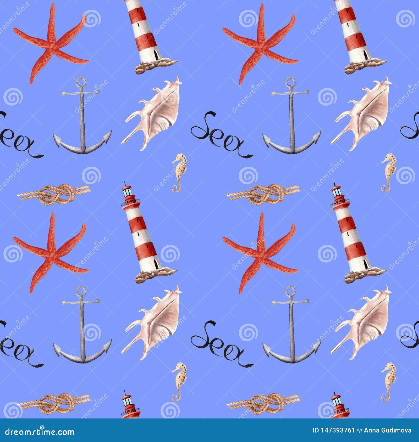Wręcza patroszonej akwareli bezszwowy patern z latarnią morską, rozgwiazdą i skorupami,