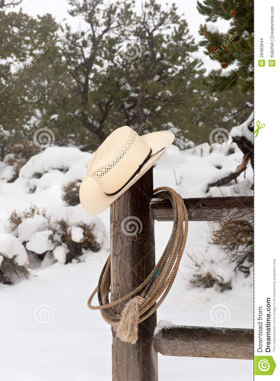 Wrangler Hat And Lasso Stock Images Image 28483844