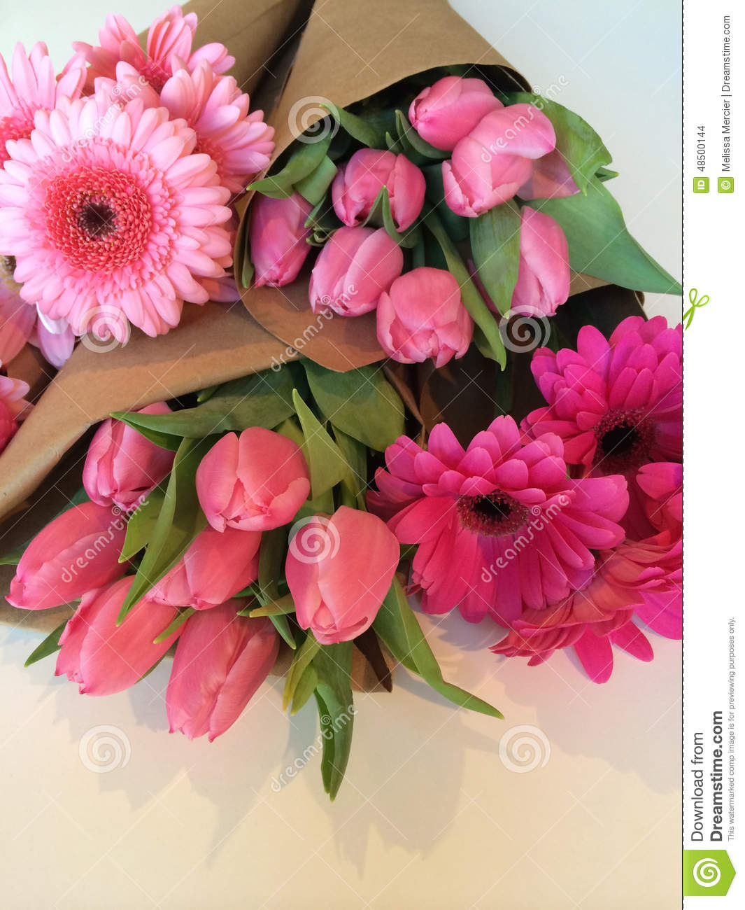 Wrapped Flower Bouquets Stock Photo Image Of Bunch Bloom 48500144