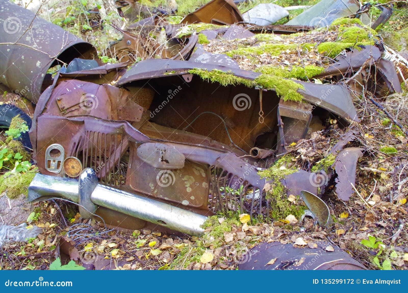 Wreek Do Carro De Renault Dauphine Gordini A Natureza Retira A Floresta Cemiterio Do Carro Na Suecia Foto De Stock Imagem De Floresta Carro 135299172