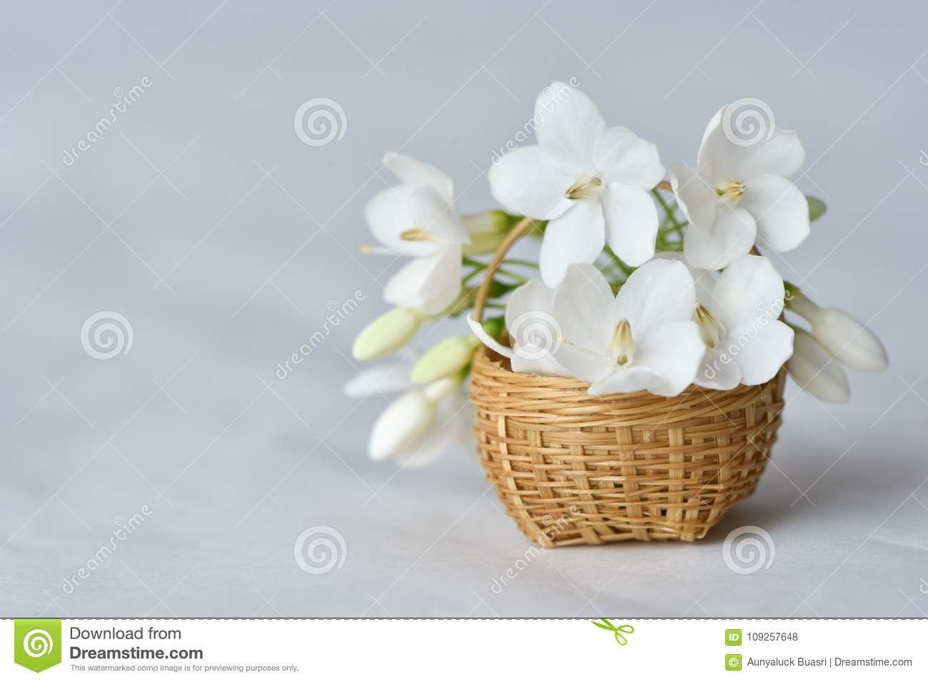 White Flower In Tiny Bamboo Basket Stock Photo Image Of Petal