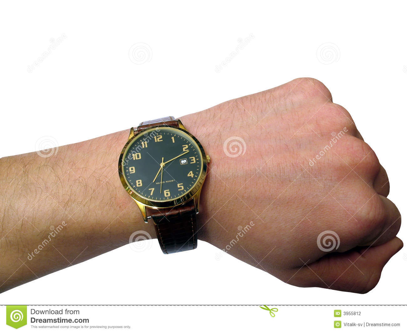Wrist Watch On Hand Isolated Stock Photography - Image ...