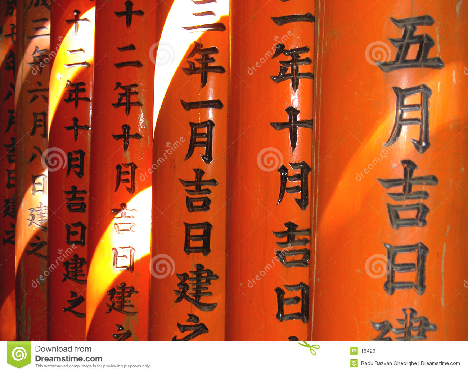 Writi цвета японское светлое