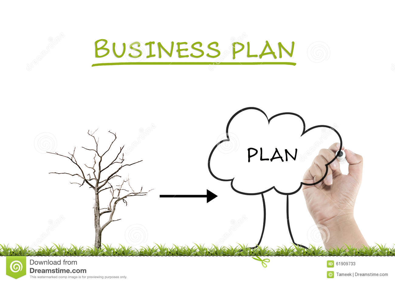 Professional business plan writing