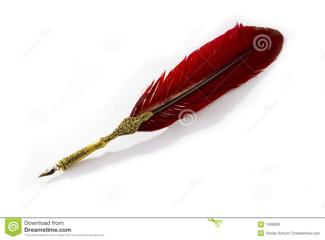Writing Feather Stock Photo Image Of Document Quill