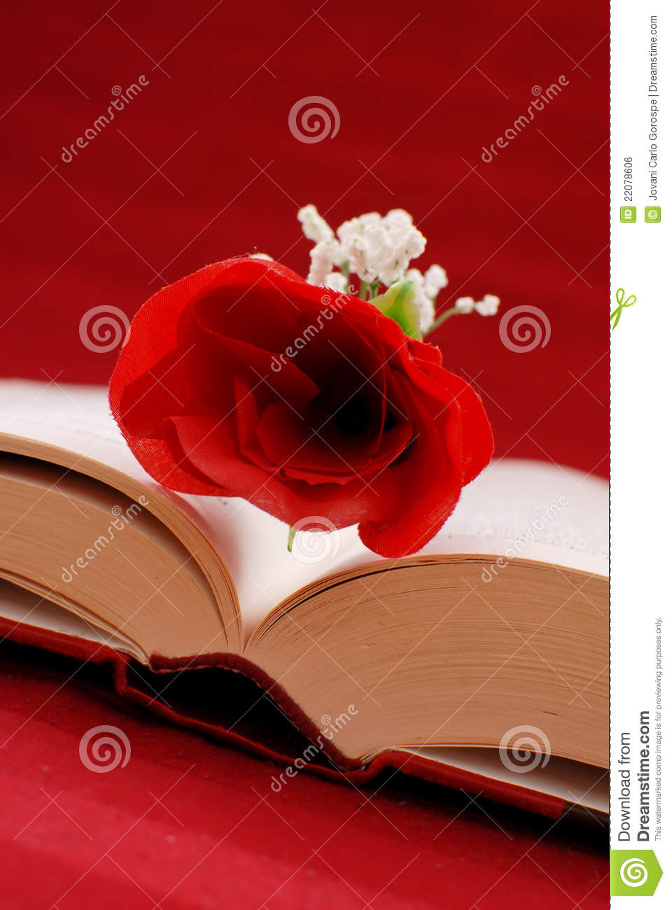 writing a romance novel If you're trying your hand at romance writing, one of the most popular fiction genres, you've come to the right place here you'll find information on developing a dynamic, engaging heroine, her perfect lover, and the conflict that separates them.