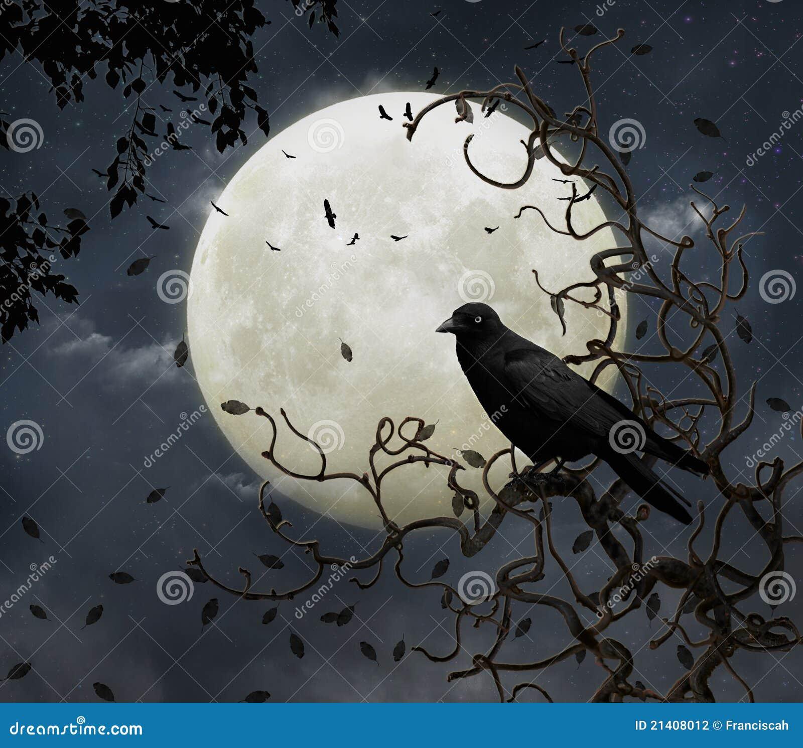 Wronia księżyc