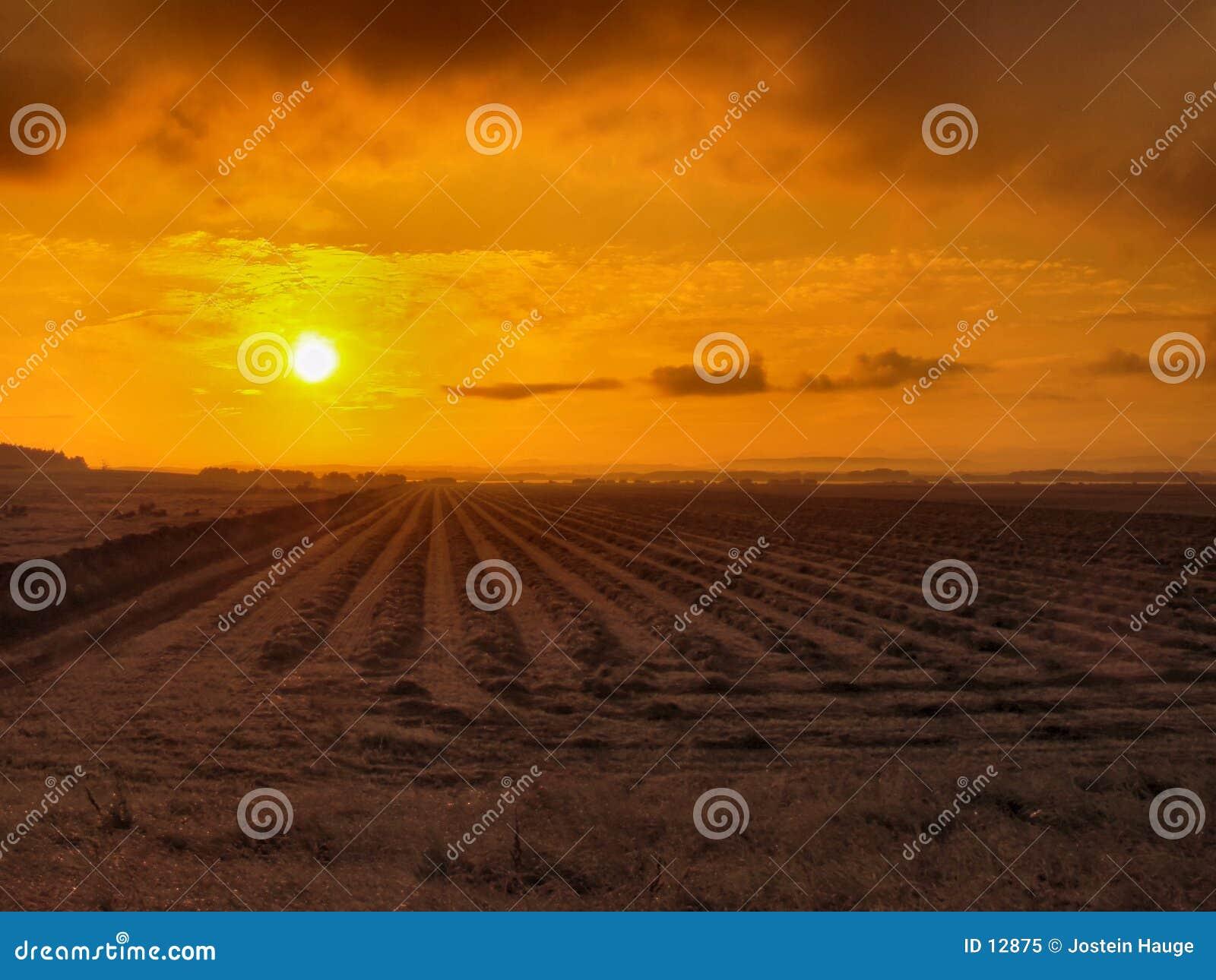 Wschód słońca na obszarach wiejskich