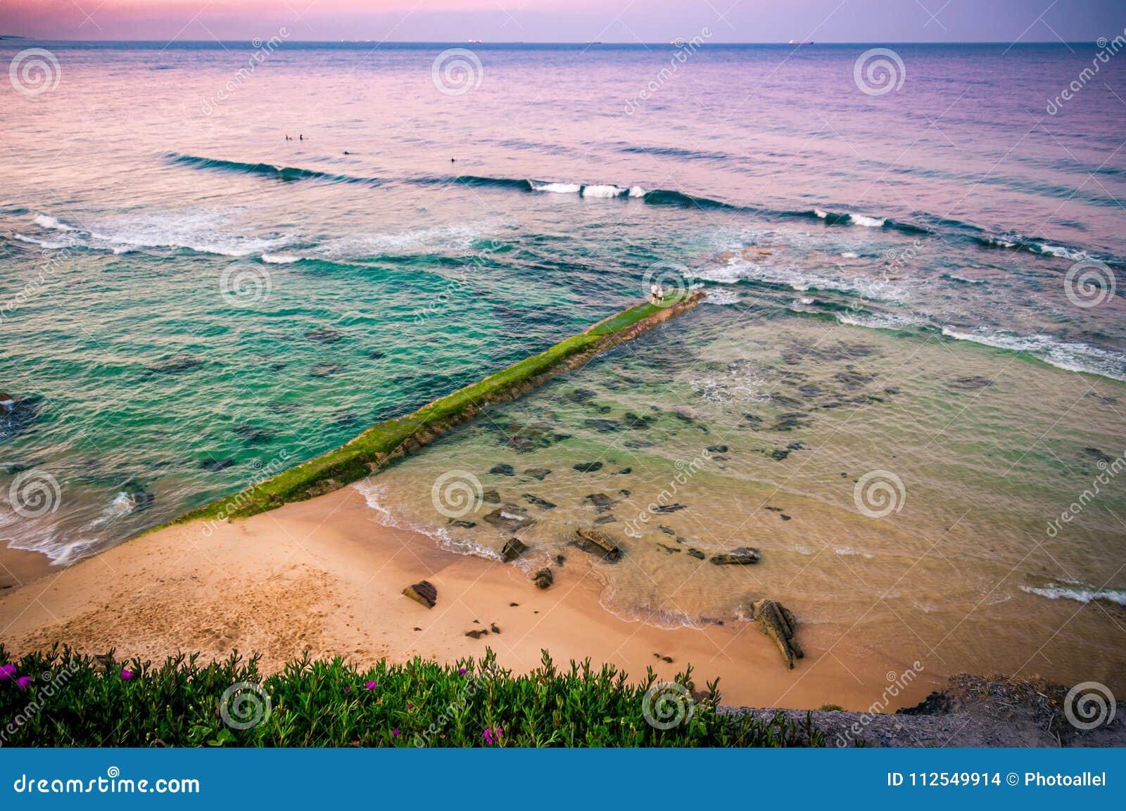 Wschód słońca nad ocean Stary kamienny molo przerastający z algami Australia, NSW, Newcastle
