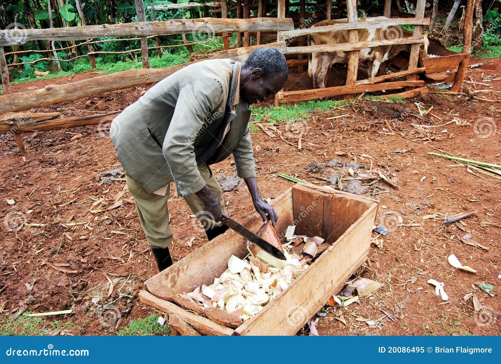 Wschodnia target606_0_ egzystencja Uganda