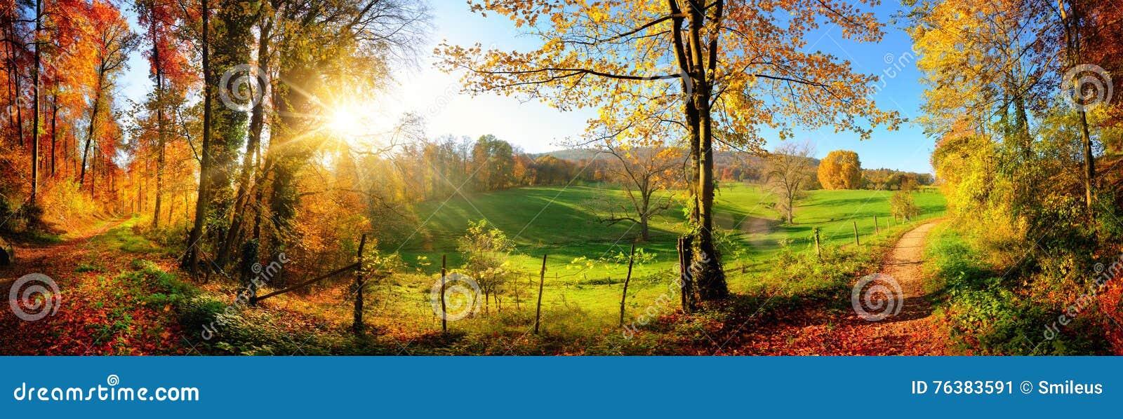 Wspaniała krajobrazowa panorama w jesieni