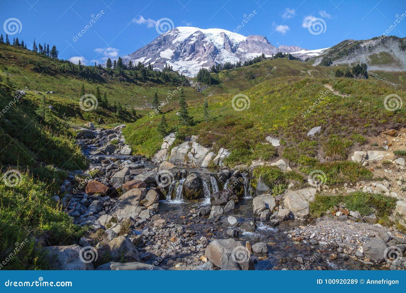 Wspina się Dżdżystego, strumienia i wysokogórskie łąki od linia horyzontu śladu,