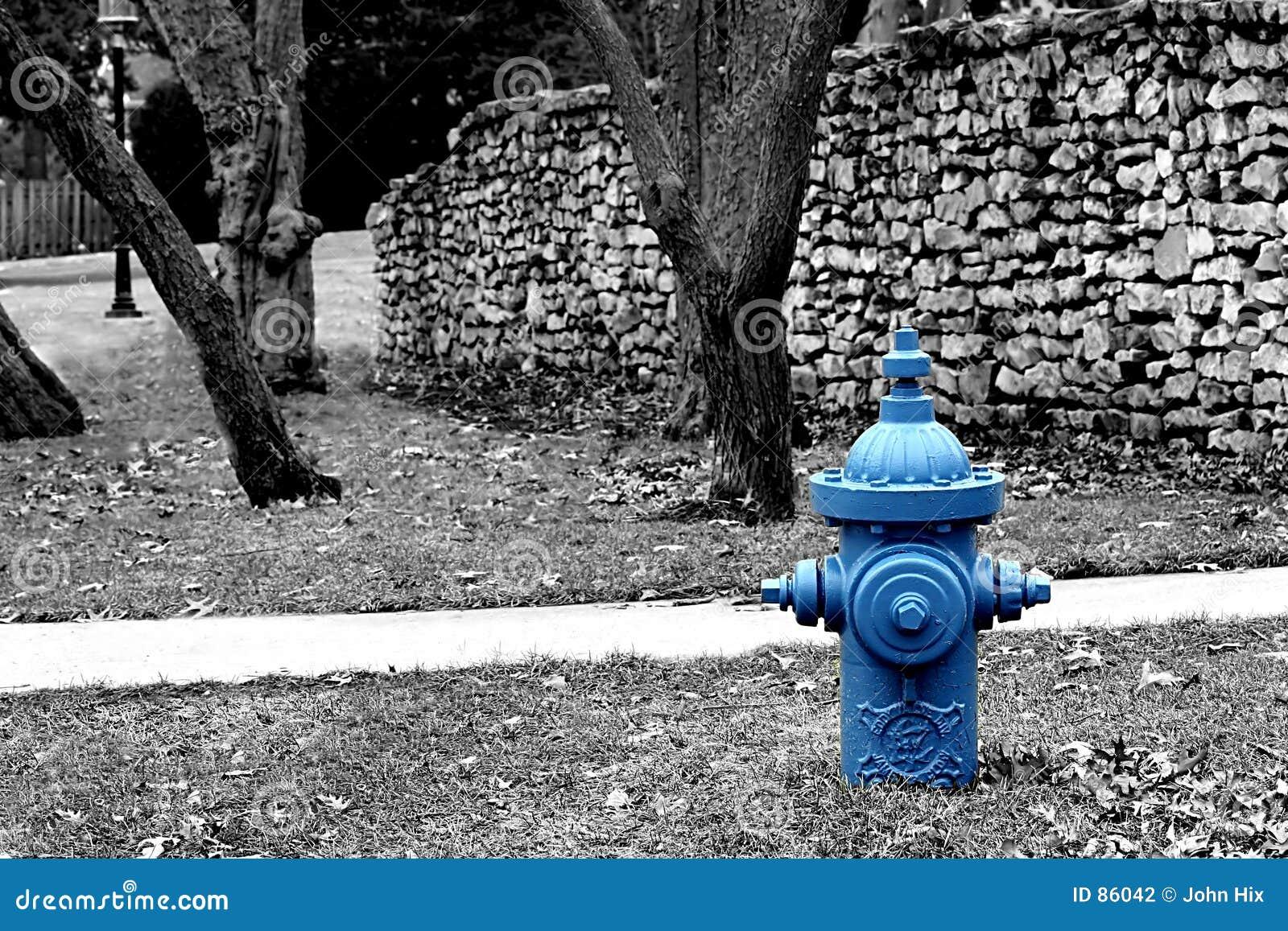 Wtyczkowa wody