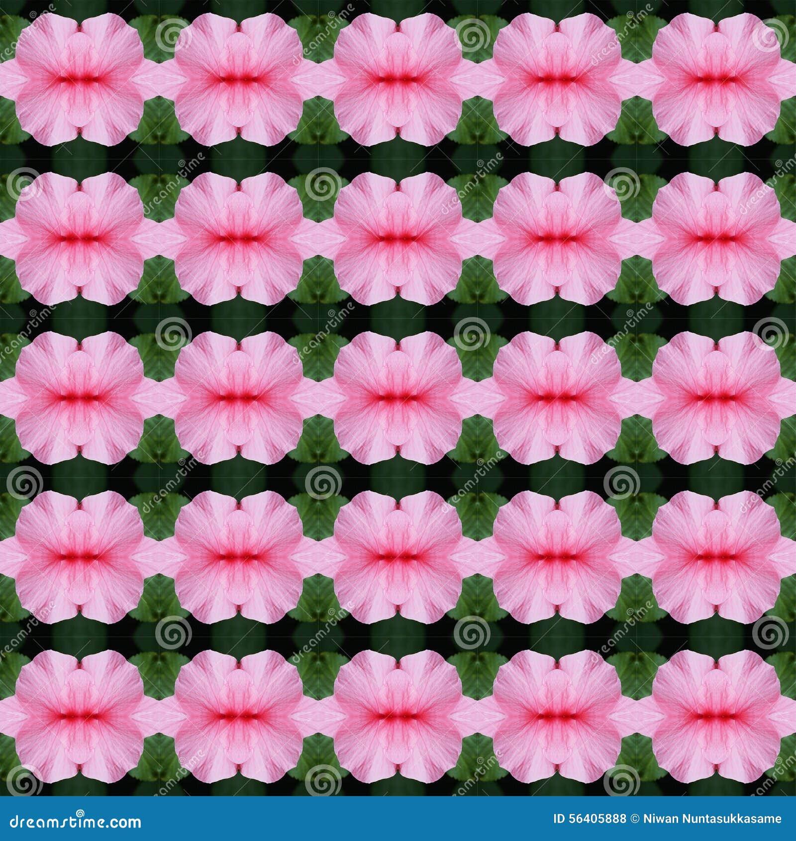 Wunderbar von der Blumenblatt Hibiscusblume nahtlos