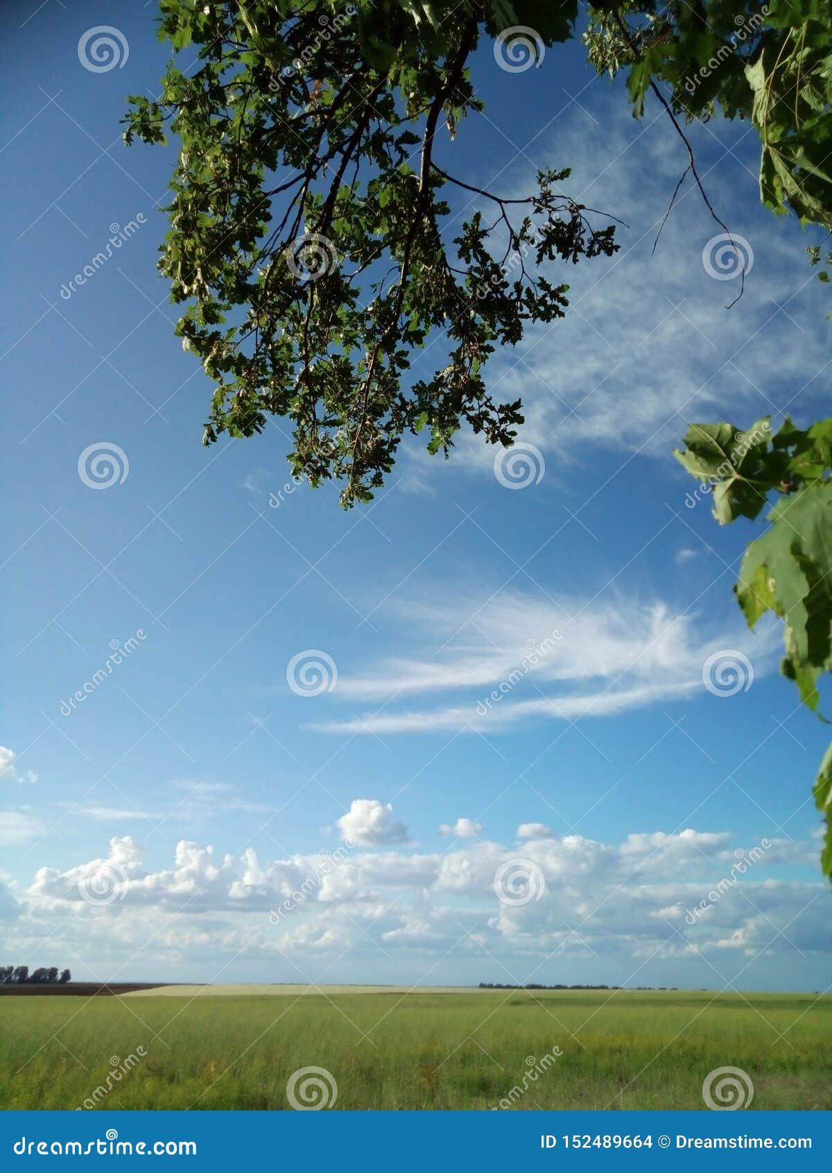Wunderbarer Himmel