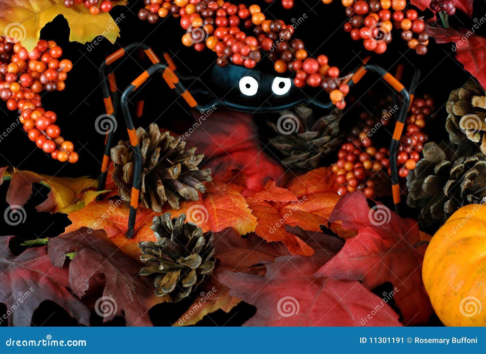 Wunderliche Halloween-Spinne in den Blättern und in den Beeren
