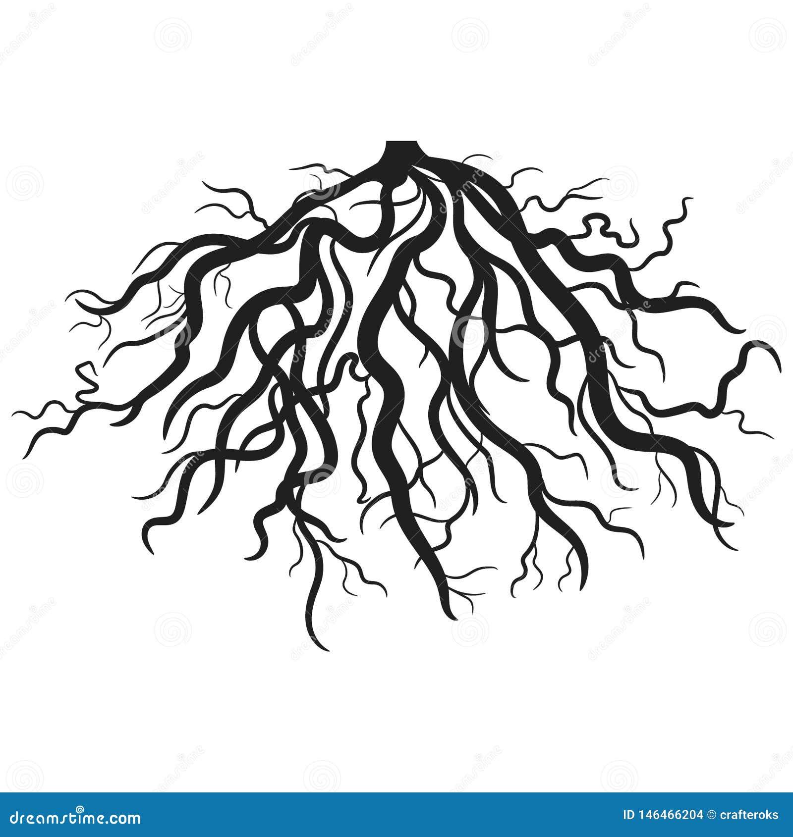 Wurzelvektor ENV Hand gezeichnet, Vektor, ENV, Logo, Ikone, crafteroks, Schattenbild Illustration für unterschiedlichen Gebrauch