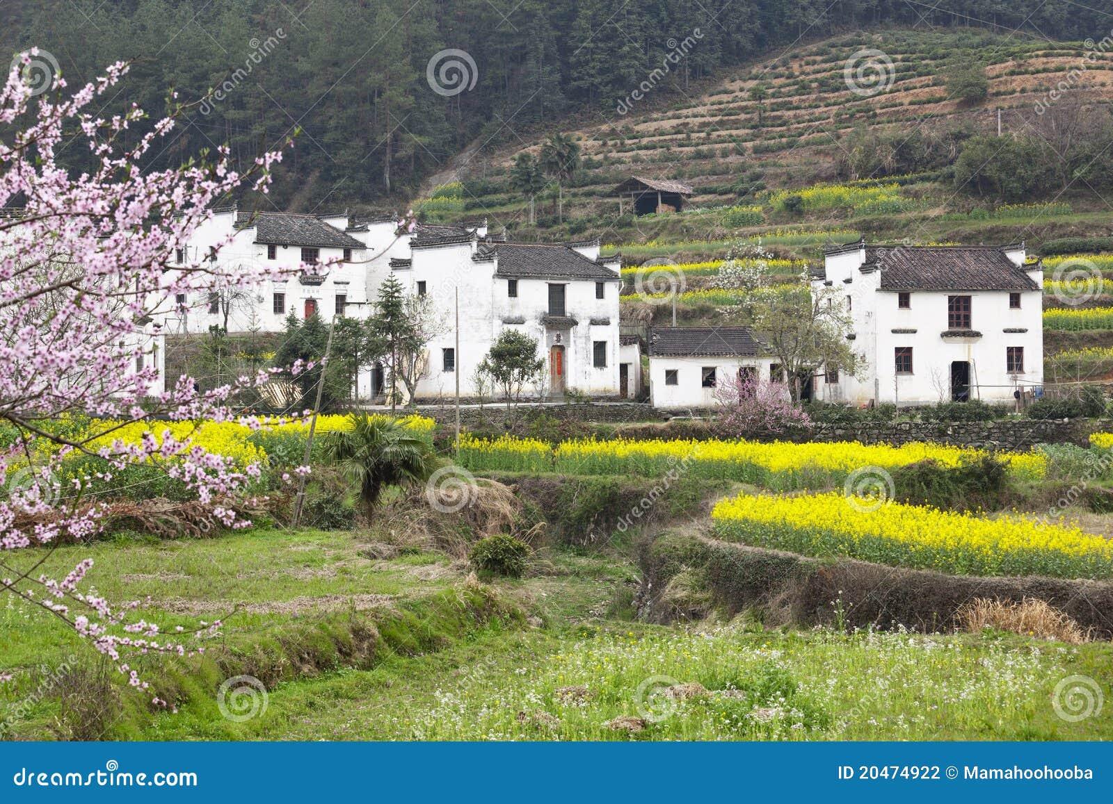 Wuyuan China  city images : Wuyuan, China: landelijke huizen