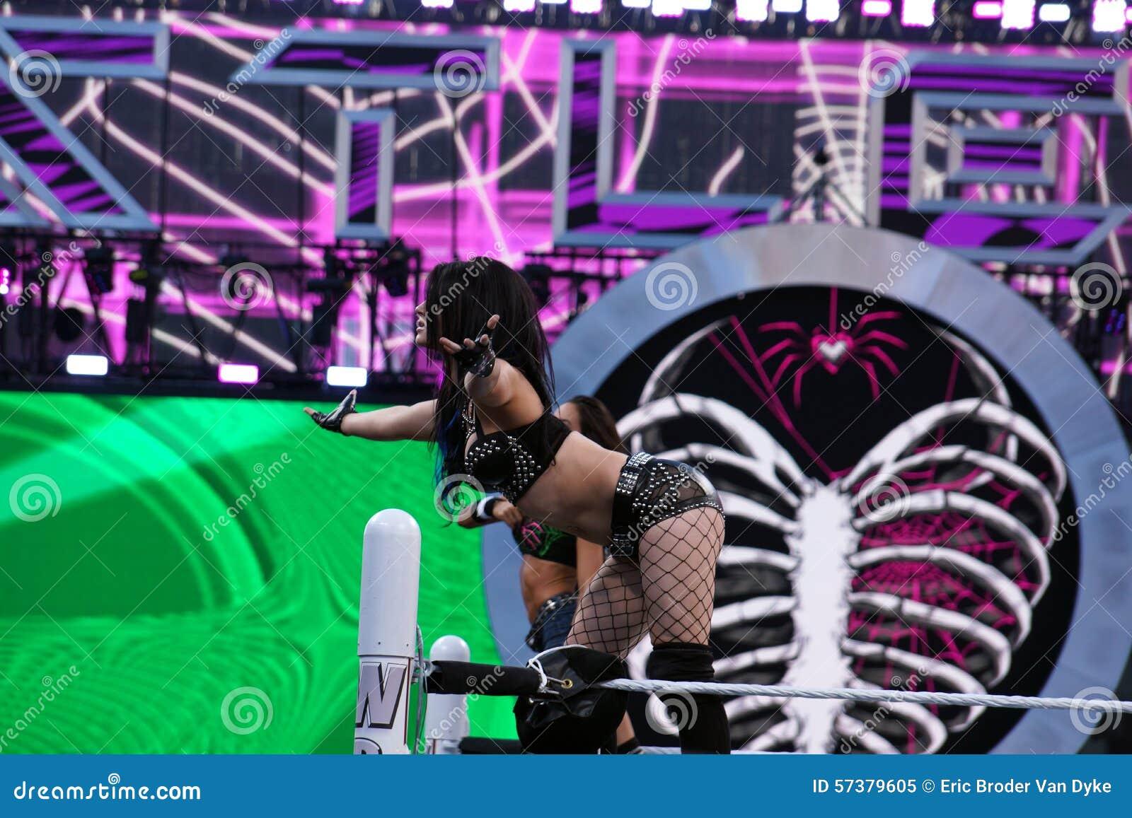 WWE Diva Paige en AJ Lee bevindt zich op bovenkant de kabels in ring tijdens