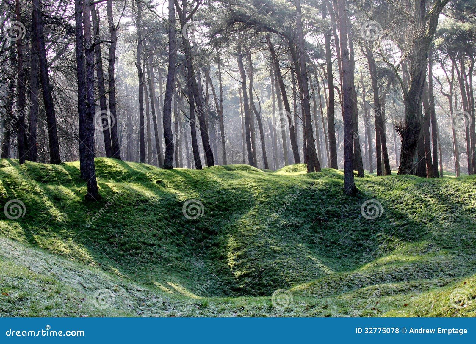 ww1 landscape memorial forest - photo #14