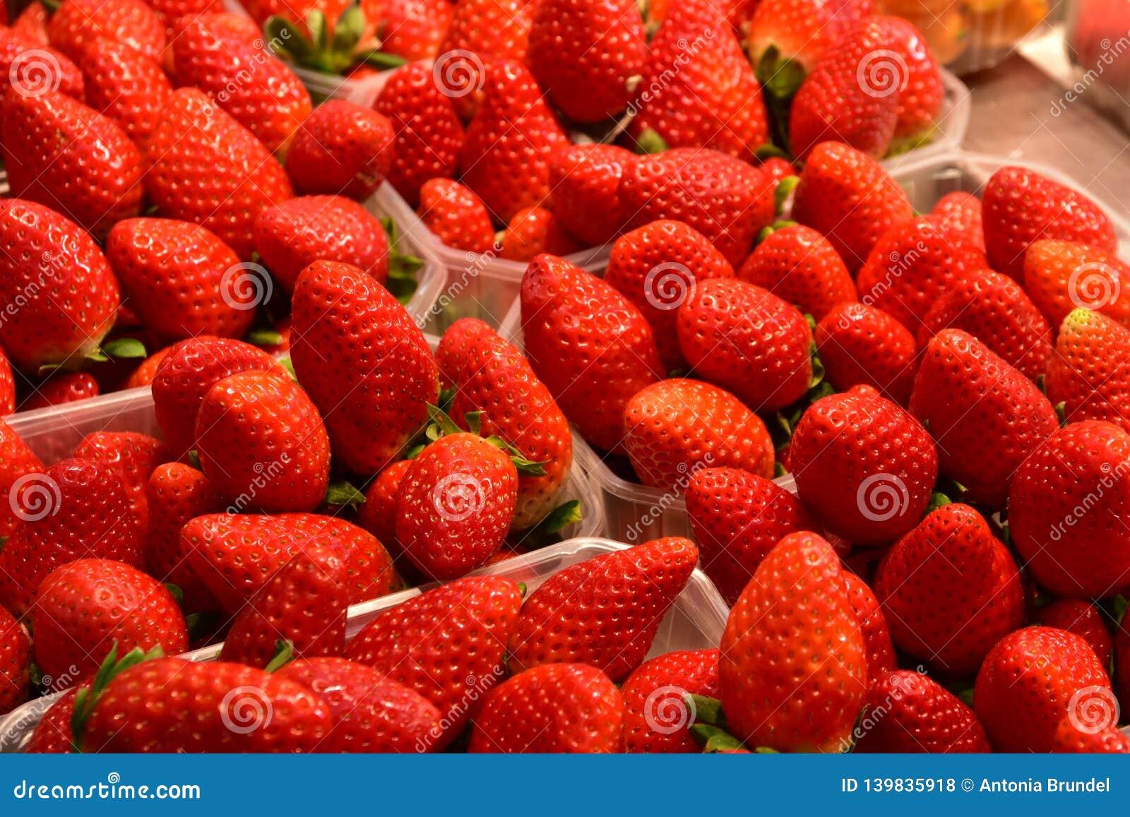 Wyśmienicie świeża truskawkowa owoc