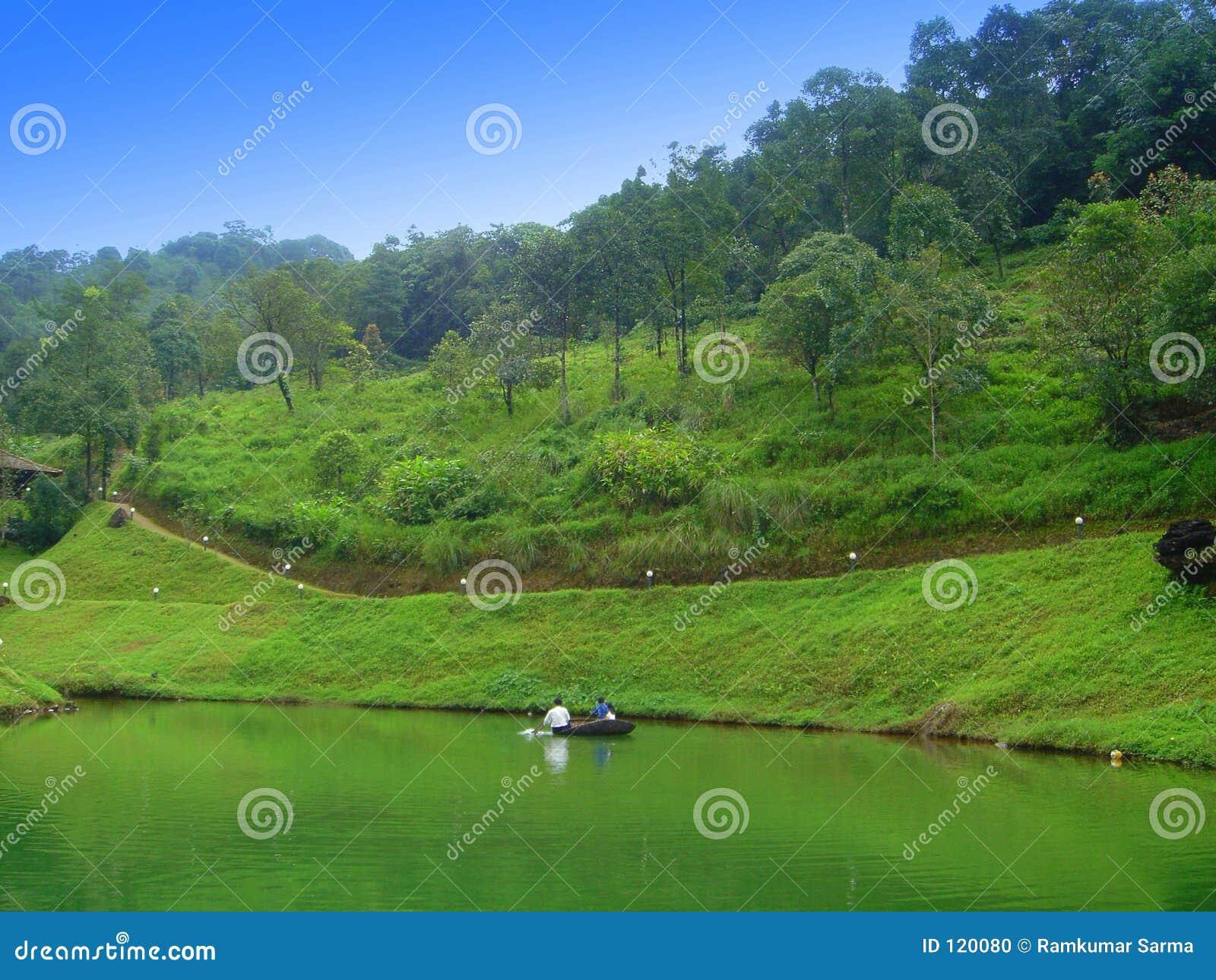 Wyanad Wald in seinem ursprünglichen Ruhm