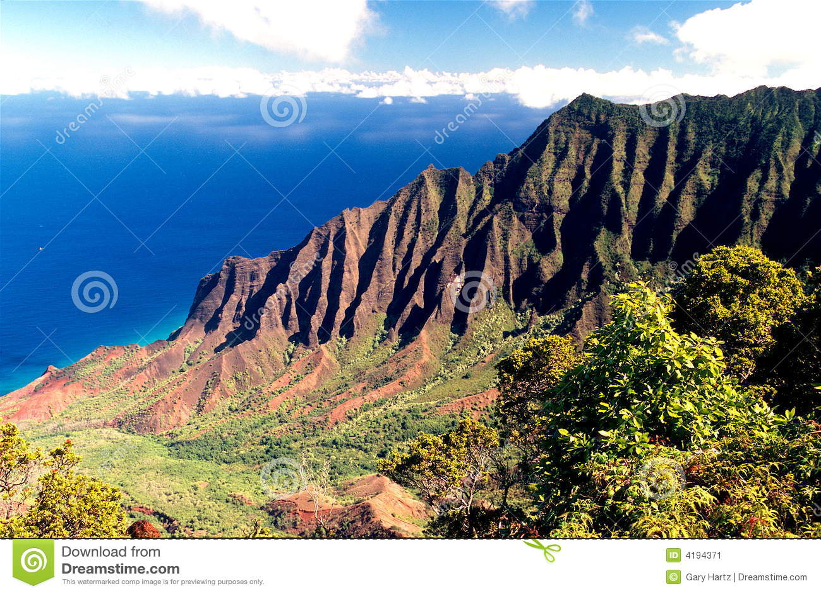 Wybrzeże Kauai Hawaii