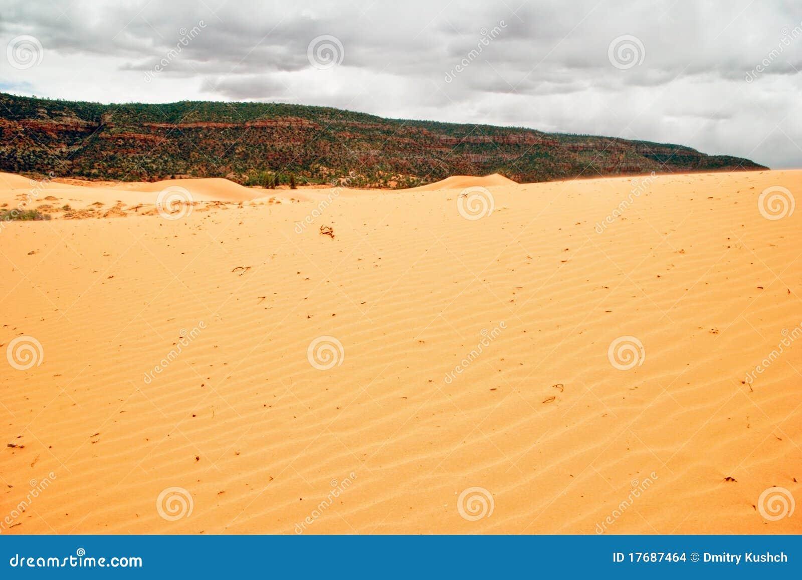 Wydmowy ponuractwa menchii piaska niebo