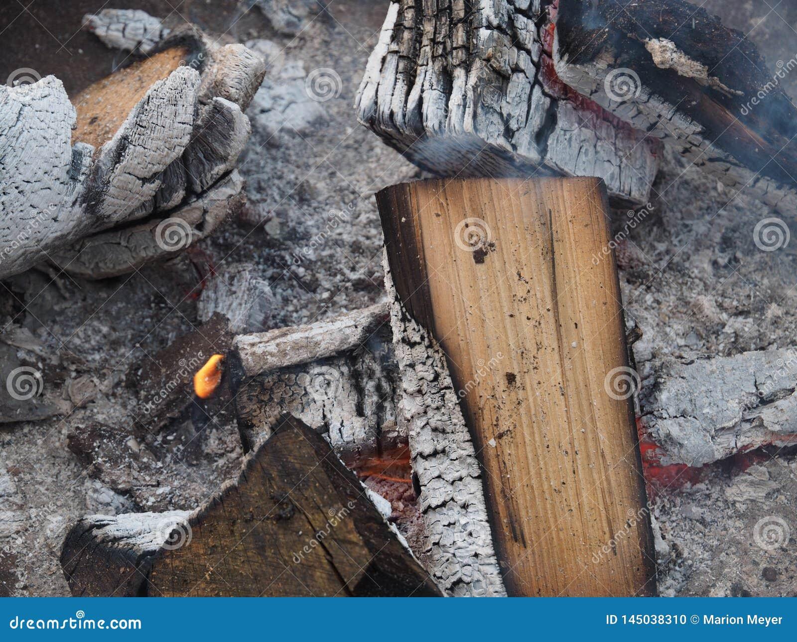 Wygasły ogień z drewnem i popiółami
