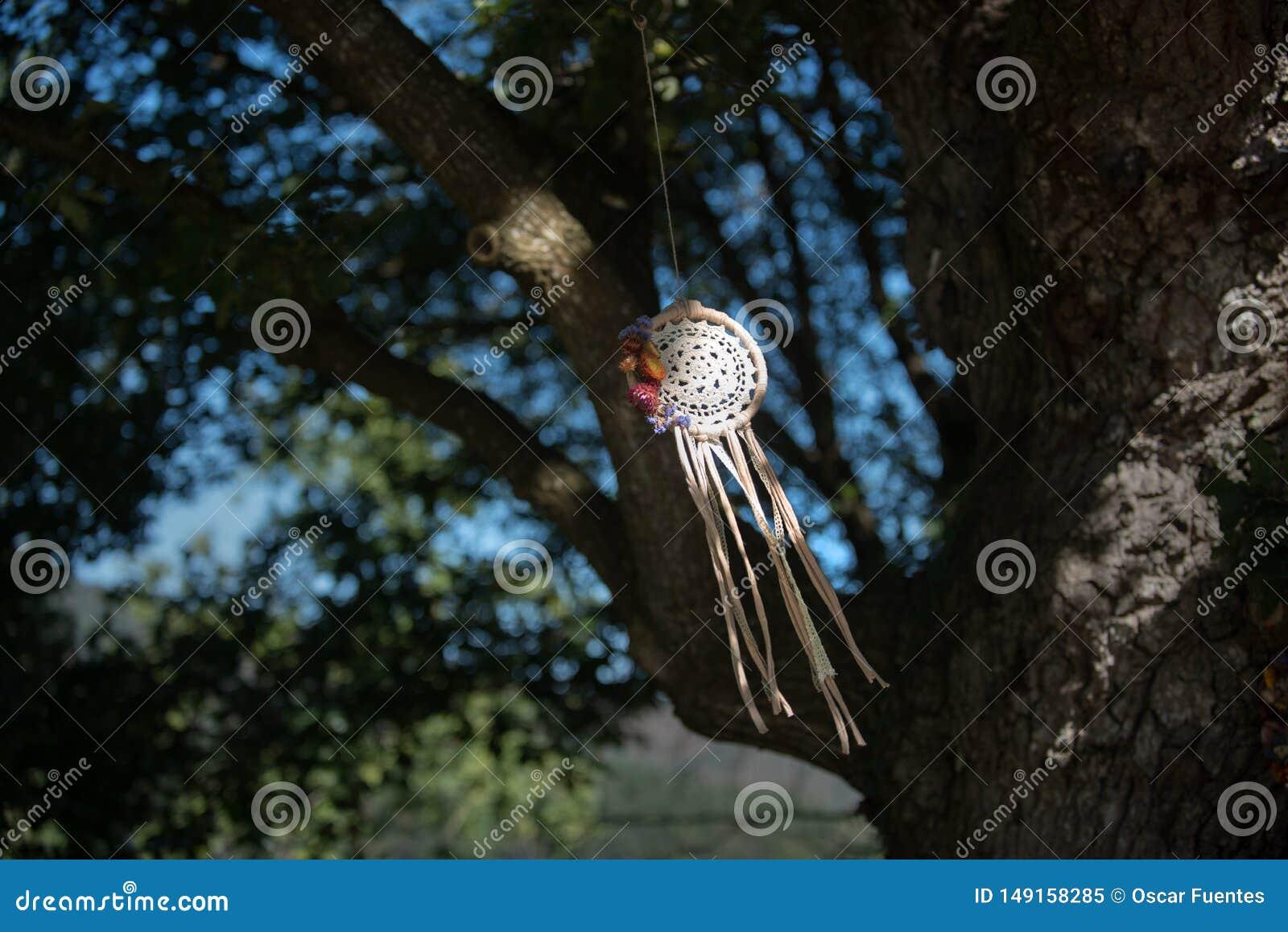Wymarzony łapacz z naturalnym tłem w rocznika stylu boho szyk, etniczny amulet