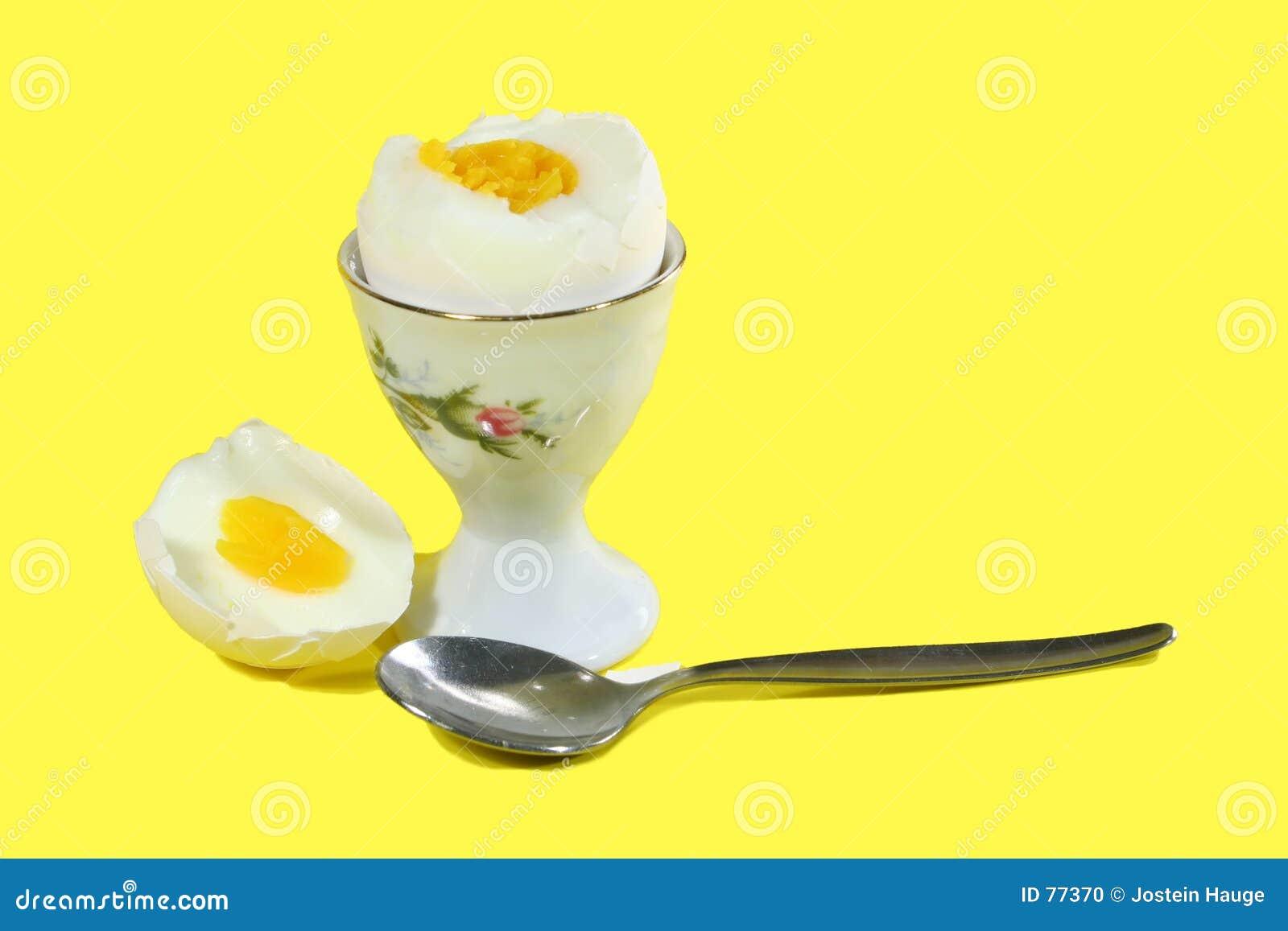 Wyparzonych jajko