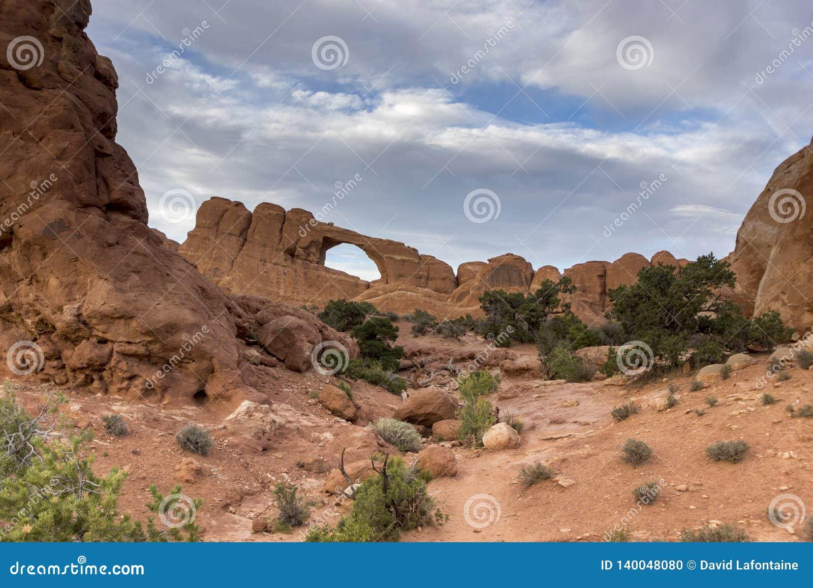 Wysklepia Utah parku narodowego