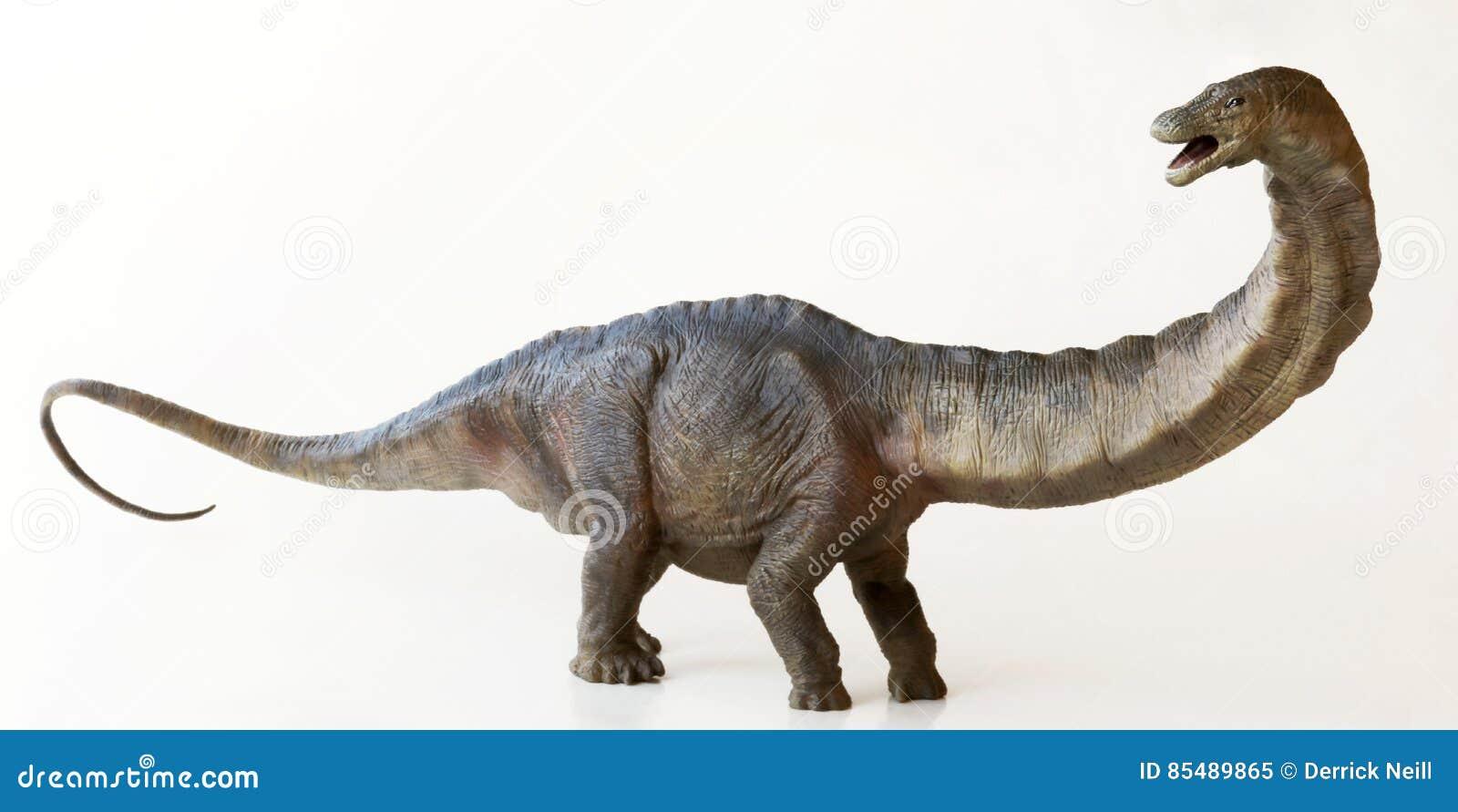 Wysoki Apatosaurus dinosaur lub Zwodniczo jaszczurka,