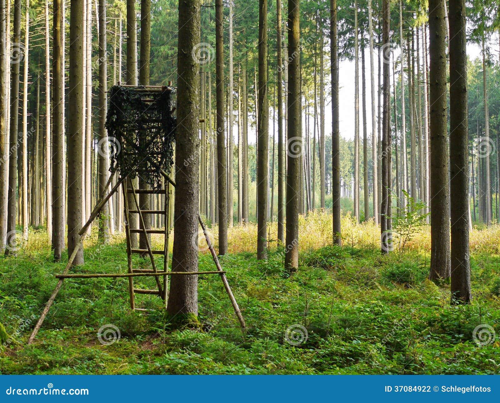 Download Wysoki siedzenie w lesie zdjęcie stock. Obraz złożonej z niemcy - 37084922