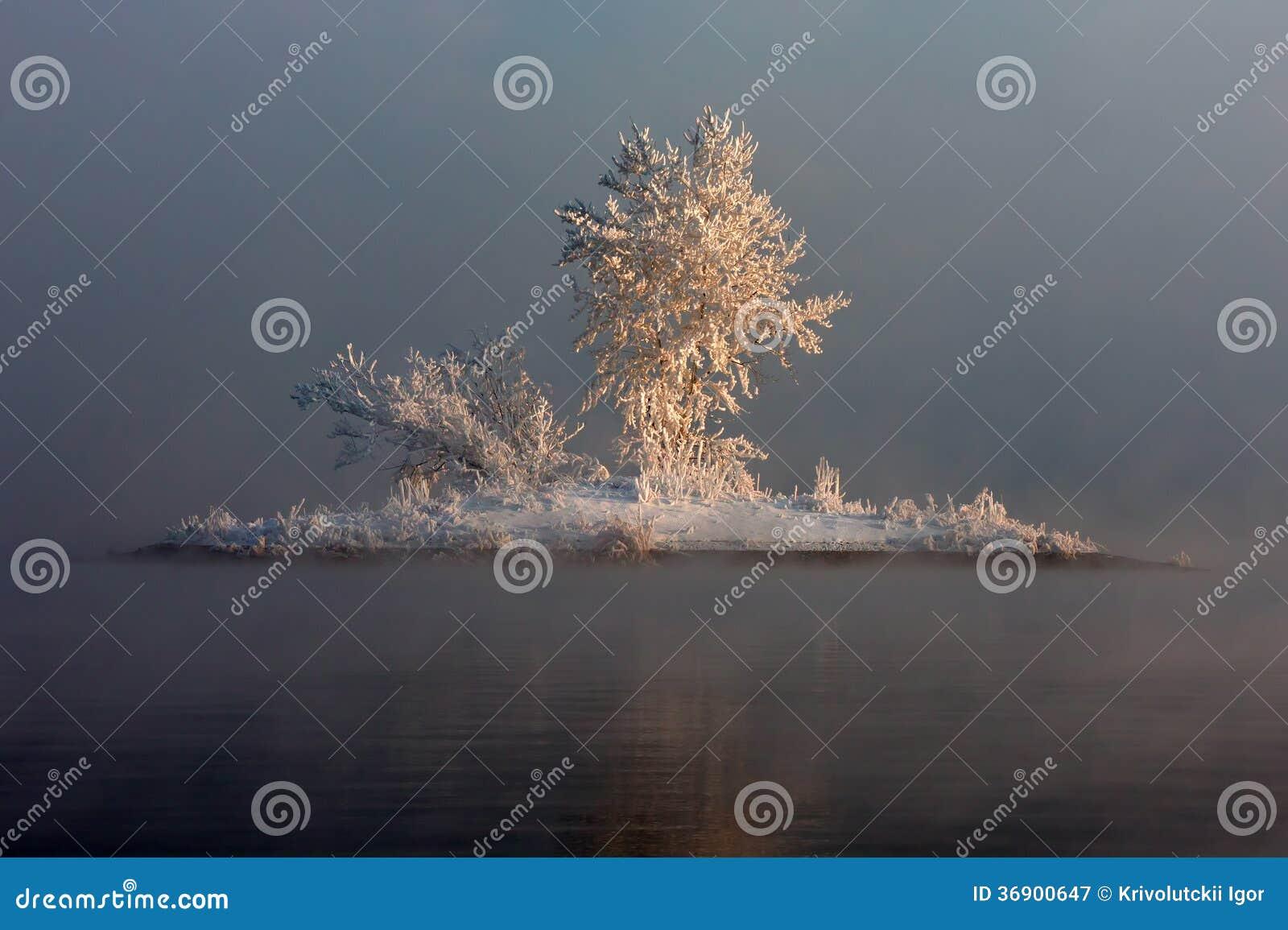 Wyspa w mgle