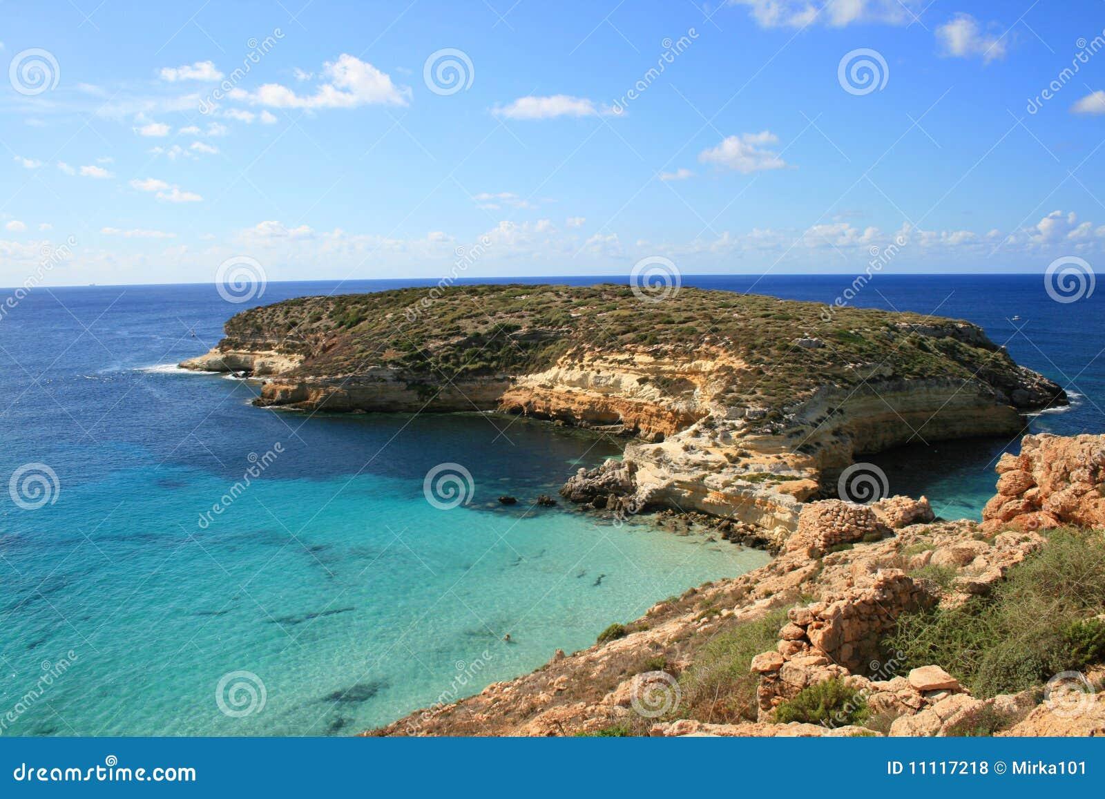Wyspy Lampedusa króliki Sicily