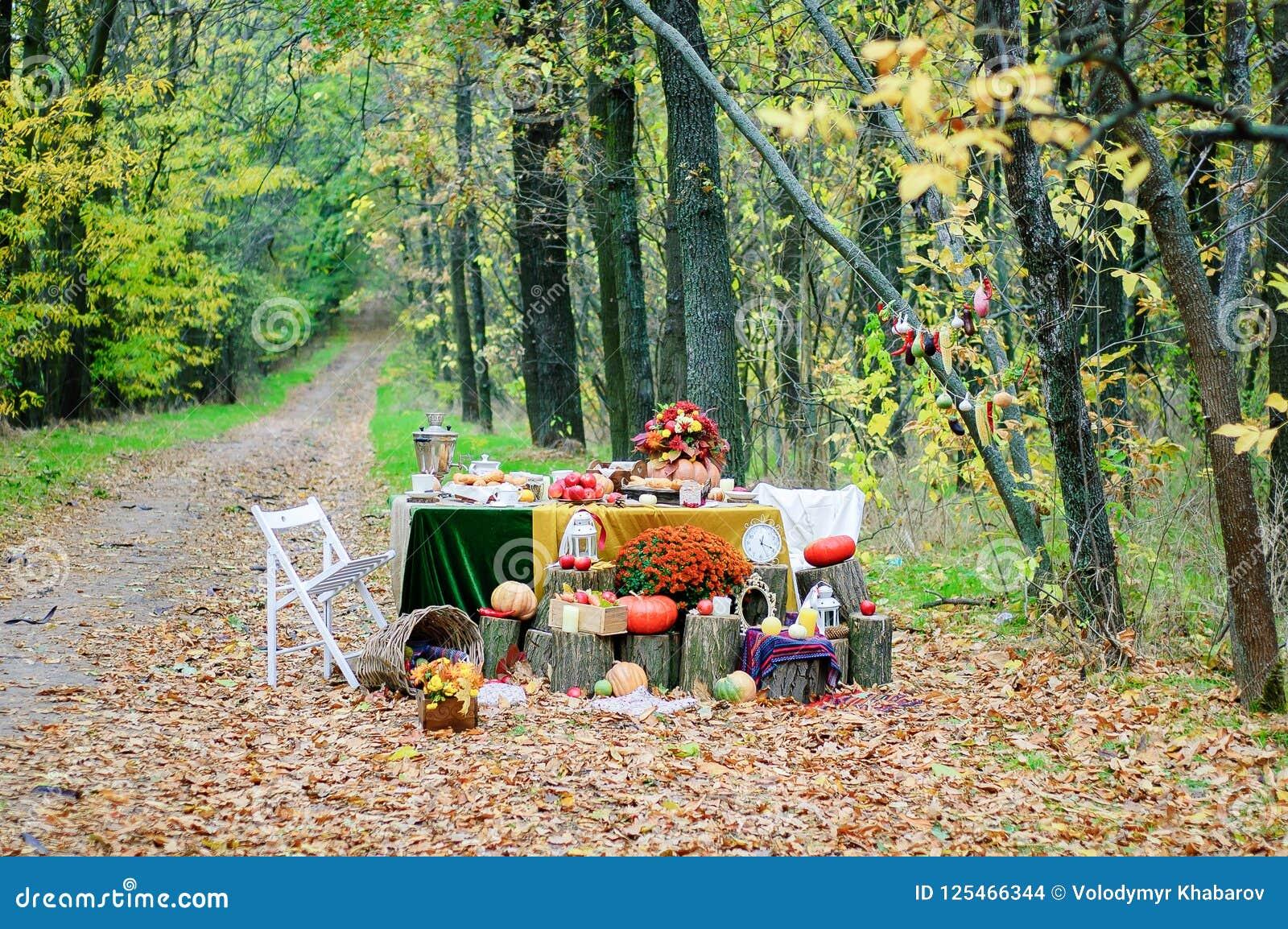 Wystrój dla jesieni fotografii projekta w lesie