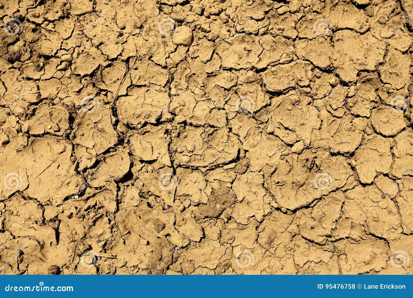 Wysuszona Borowinowa susza Spiekająca brud ziemia