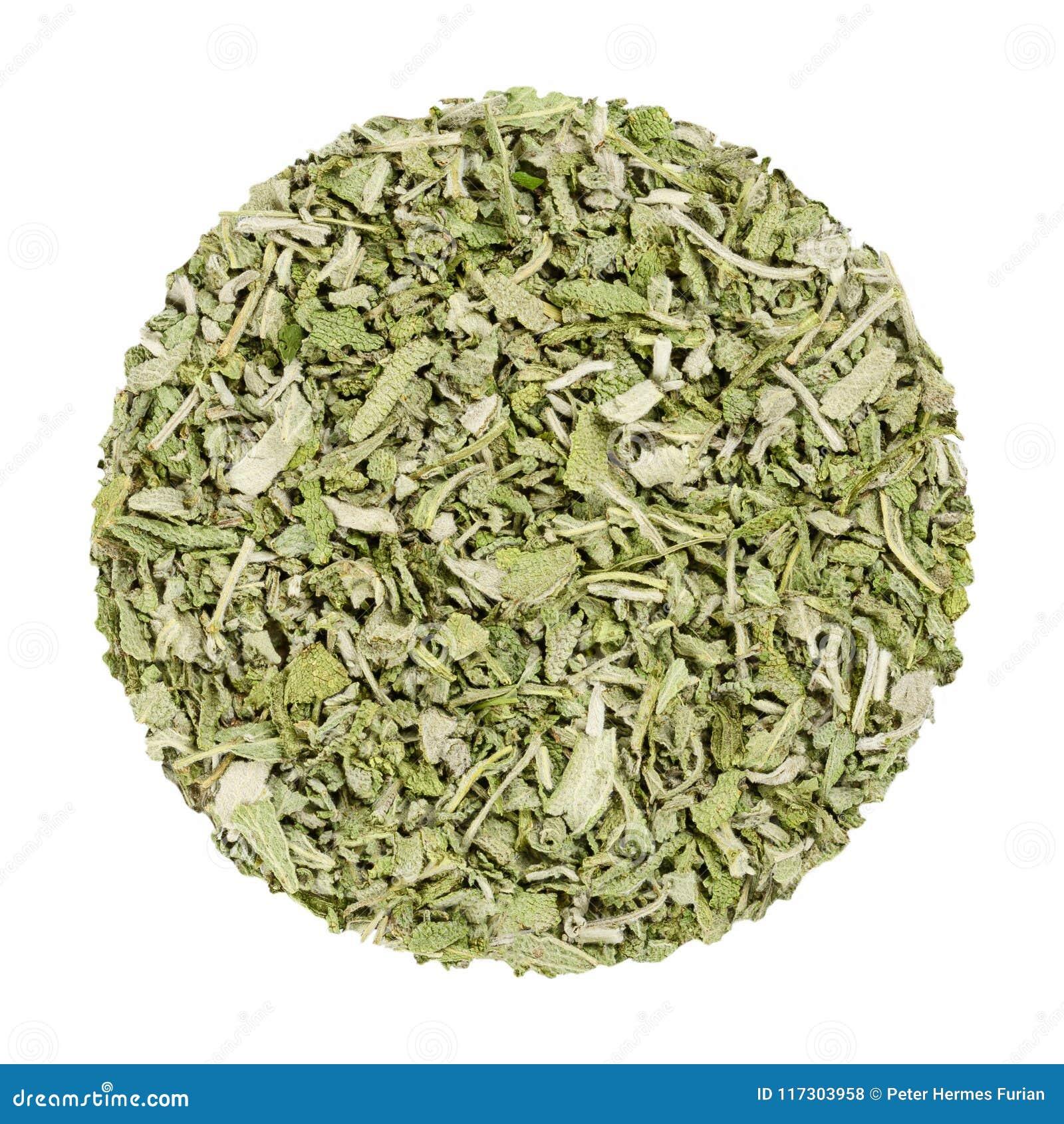 Wysuszona mędrzec, zielarski okrąg od above, nad bielem
