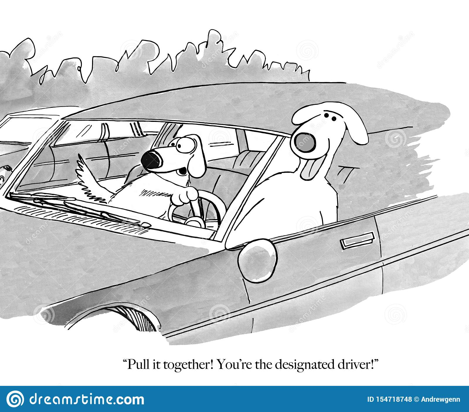 Wyznaczający kierowcy pies bawić się