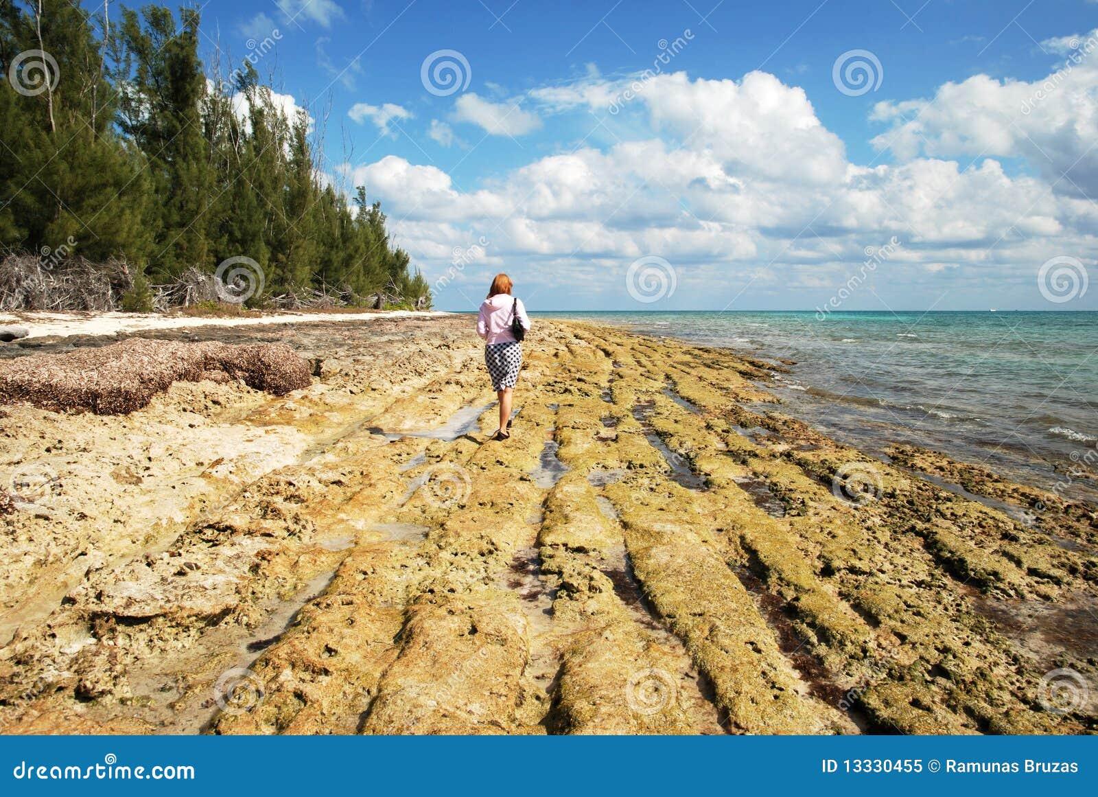Wzdłuż plażowy skalistego
